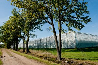 Vlimmeren,greenhouses,serres,Belgium,België,Belgique