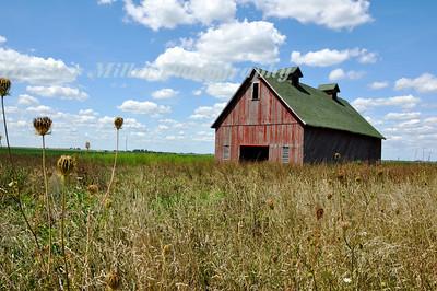 Champaign Red Barn-0382