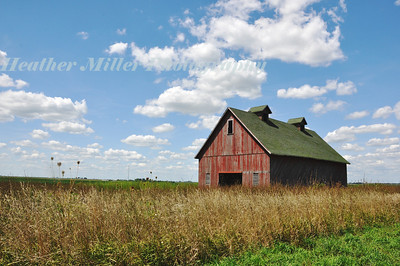 West Champaign Red Barn-0373