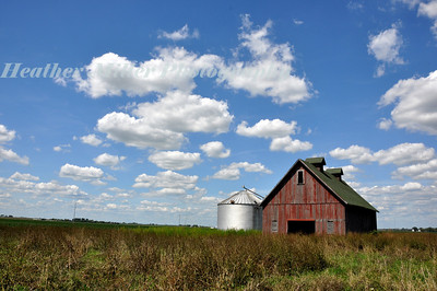 Champaign Red Barn-0390