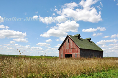 Champaign Red Barn-0375