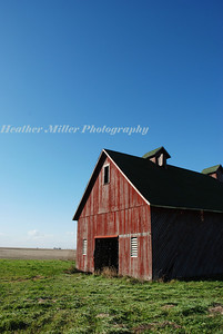 red barn-blue sky 5155