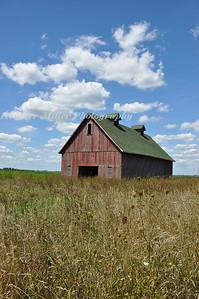 Champaign Red Barn-0380