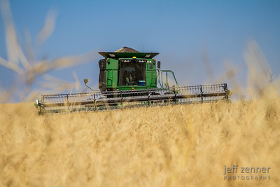 Harvesting Canola in Nezperce, Idaho, with a John Deere 9770 STS Combine