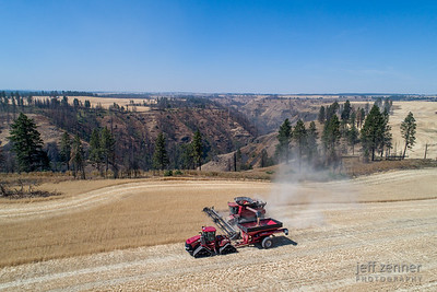 CaseIH/Case IH Combine Harvesting Wheat in Idaho!