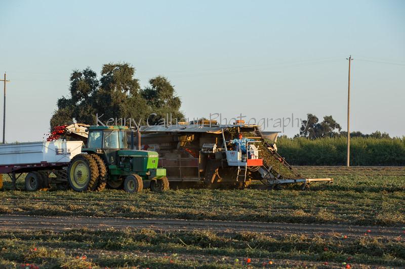 2019 PT Harvesters-6211