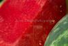 Watermelons_N5A7210
