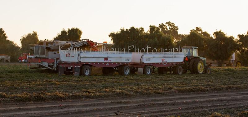 2019 PT Harvesters-