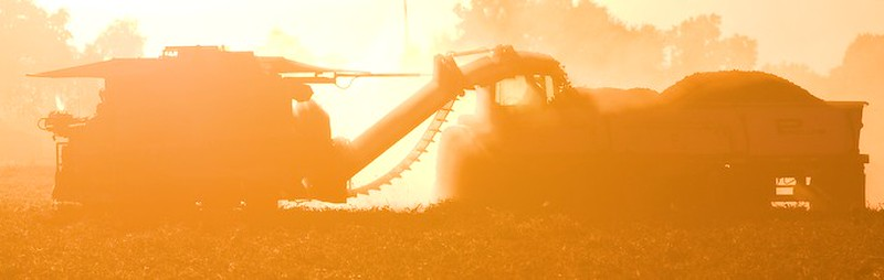 Mullers Tomato Harvester at Sunset