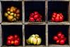 Heirloom Tomatoes Back Yard_N5A8352-Edit