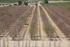 CA Drought_N5A9066