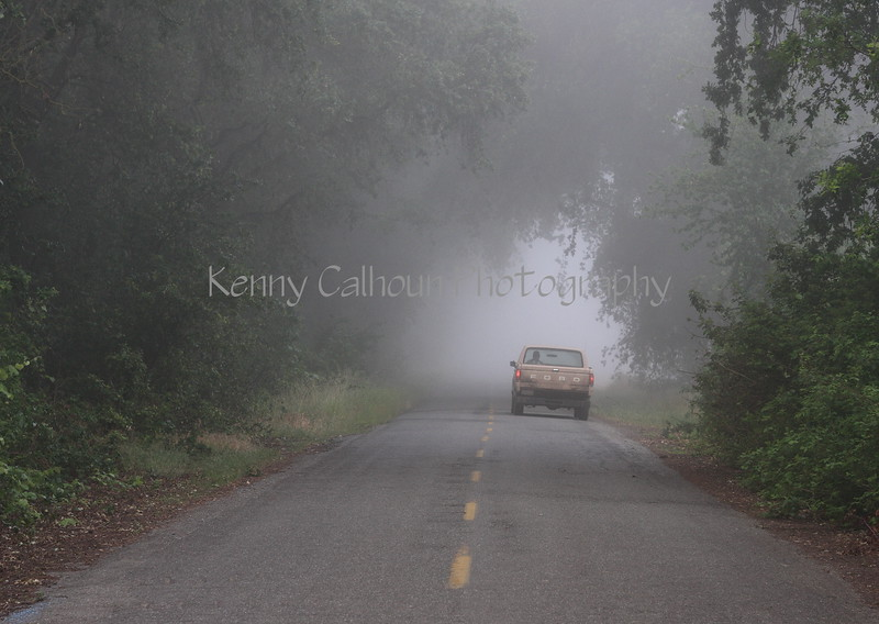 Ford on a Foggy Road
