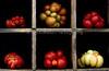 Heirloom Tomatoes Back Yard_N5A8347-Edit