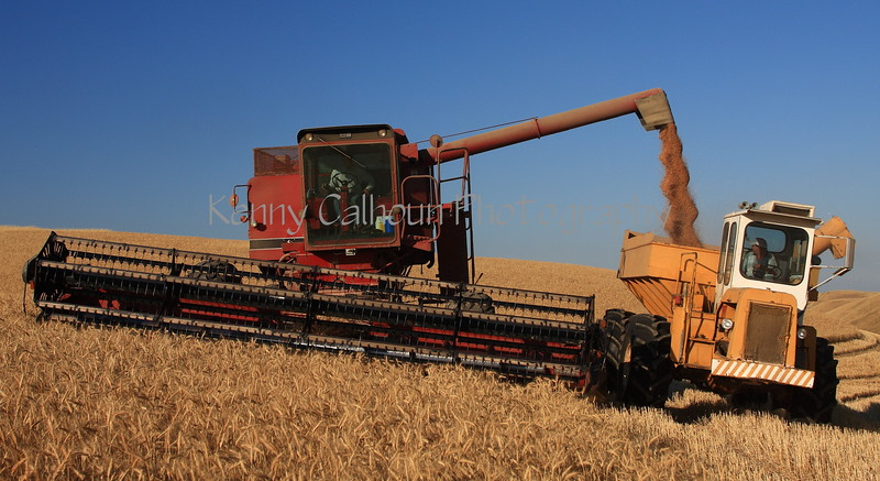 Side Hill Harvester and Bank Out Wagon