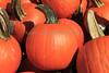 IMG_6519_Pumpkins_Perrys