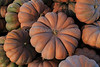 IMG_4907Fairytale_Pumpkin