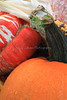 Pumpkins, Gourds, Squash, Indian Corn 2