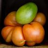 Heirloom Tomatoes Back Yard_N5A8320