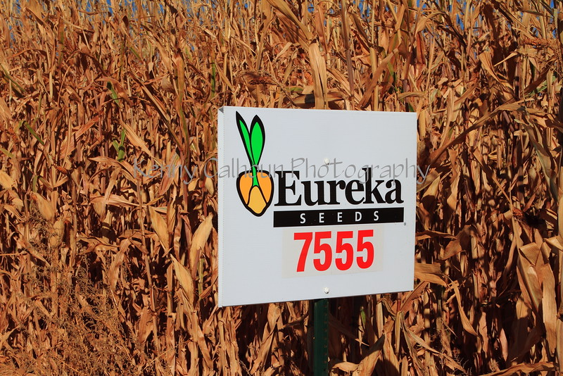 Eureka Corn Signs