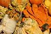 Pumpkins and Gourds 2