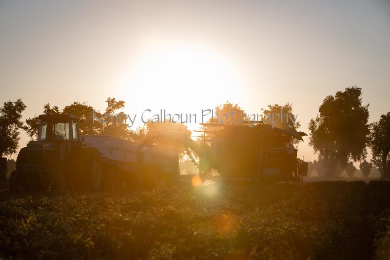 2019 PT Harvesters-6281