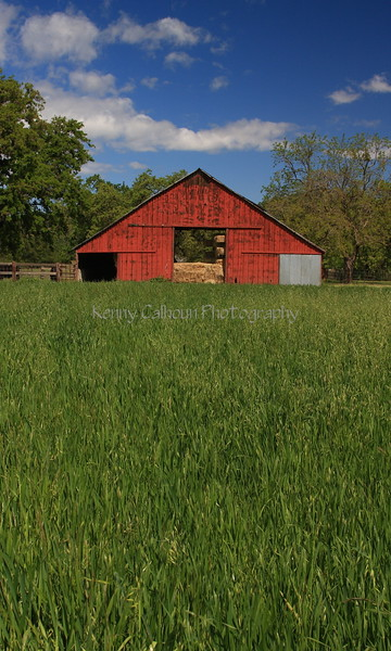 Red Barn and Oats