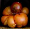 Heirloom Tomatoes Back Yard_N5A8323