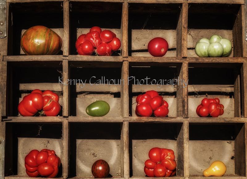 Heirloom Tomatoes Back Yard_N5A8241-Edit-2