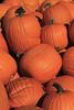 IMG_7776_Pumpkins