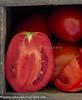 P Tomatoes_N5A9064