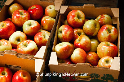 Honeycrisp Apples, Crawford County, Wisconsin