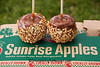 Caramel Apples, Sunrise Orchards, Crawford County, Wisconsin