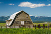 An old farm barn near Kalispell, Montana, USA.