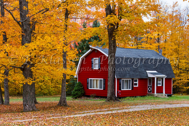 A barn cottage with fall foliage color in rural Michigan, Upper Peninsula, USA.