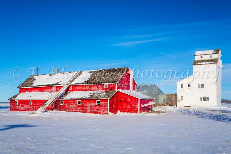 The G. Elias barn and elevator near Blumenfeld, Manitoba, Canada.