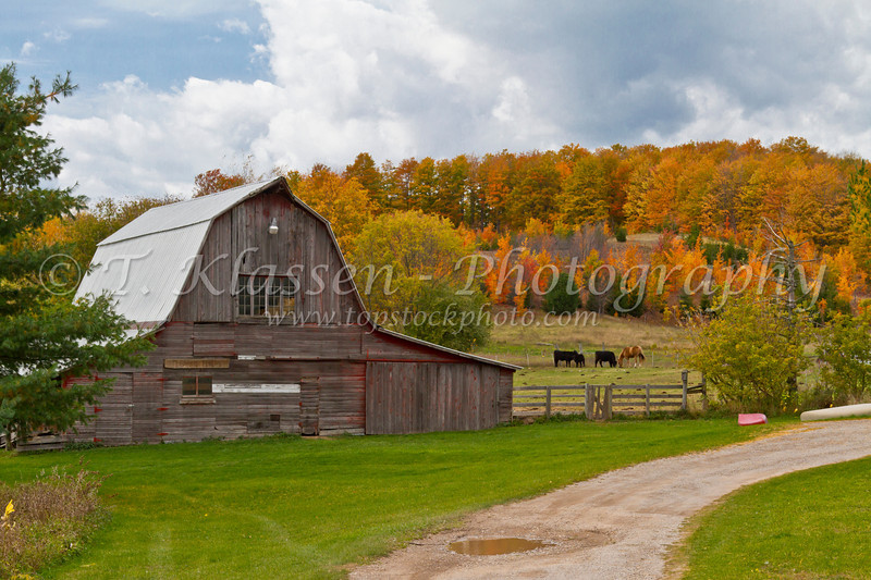 A country barn along Highway 119 in Michigan's Lower Penninsula, USA.