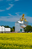 Grain elevator and canola field at Glenboro, Manitoba, Canada