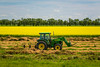 A tractor and a yellow blooming canola field near Notre Dame de lourdes, Manitoba, Canada.