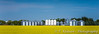 Farm grain bins in a yellow canola field near MIami, Manitoba, Canada.