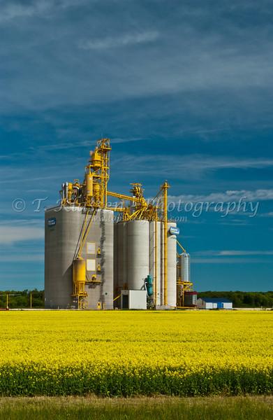 Agricore modern inland grain terminal at Starbuck, Manitoba, Canada.
