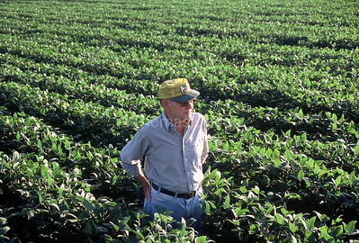 Dad in soybean field.