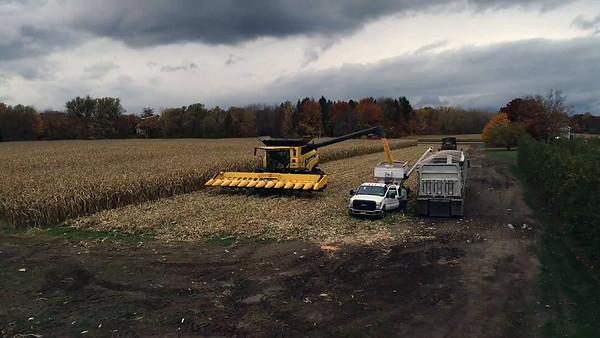Sandy Knoll Farms