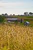 Farm Scene, Vernon County, Wisconsin