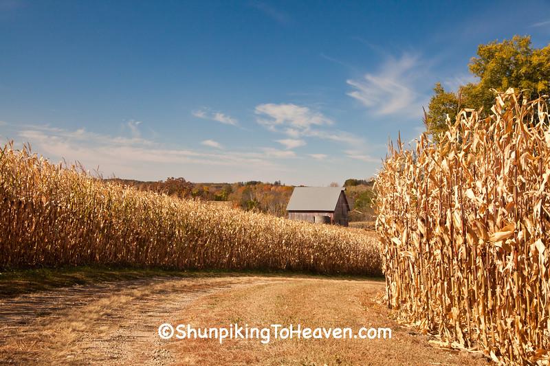 Autumn Farm Scene, Pepin County, Wisconsin