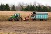 Autumn Corn Harvest, Washington County, Wisconsin