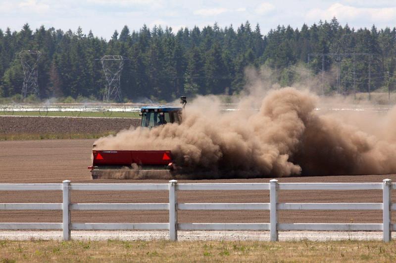 Dust 4809