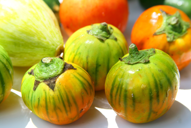 Tomatillos and tomatoes on white.