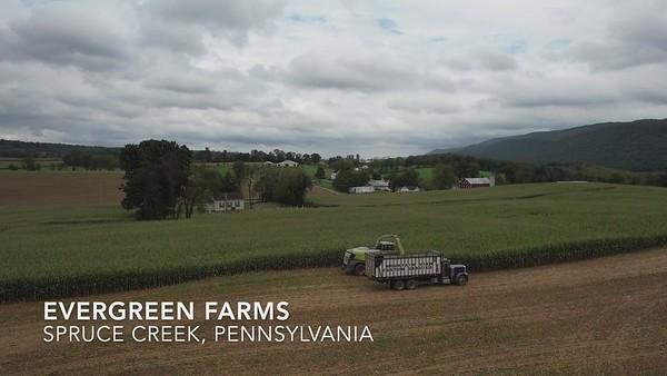 Evergreen Farms
