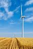Windmills among the wheat fields in Eastern Washington