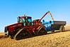 Grain harvest in Dayton, WA